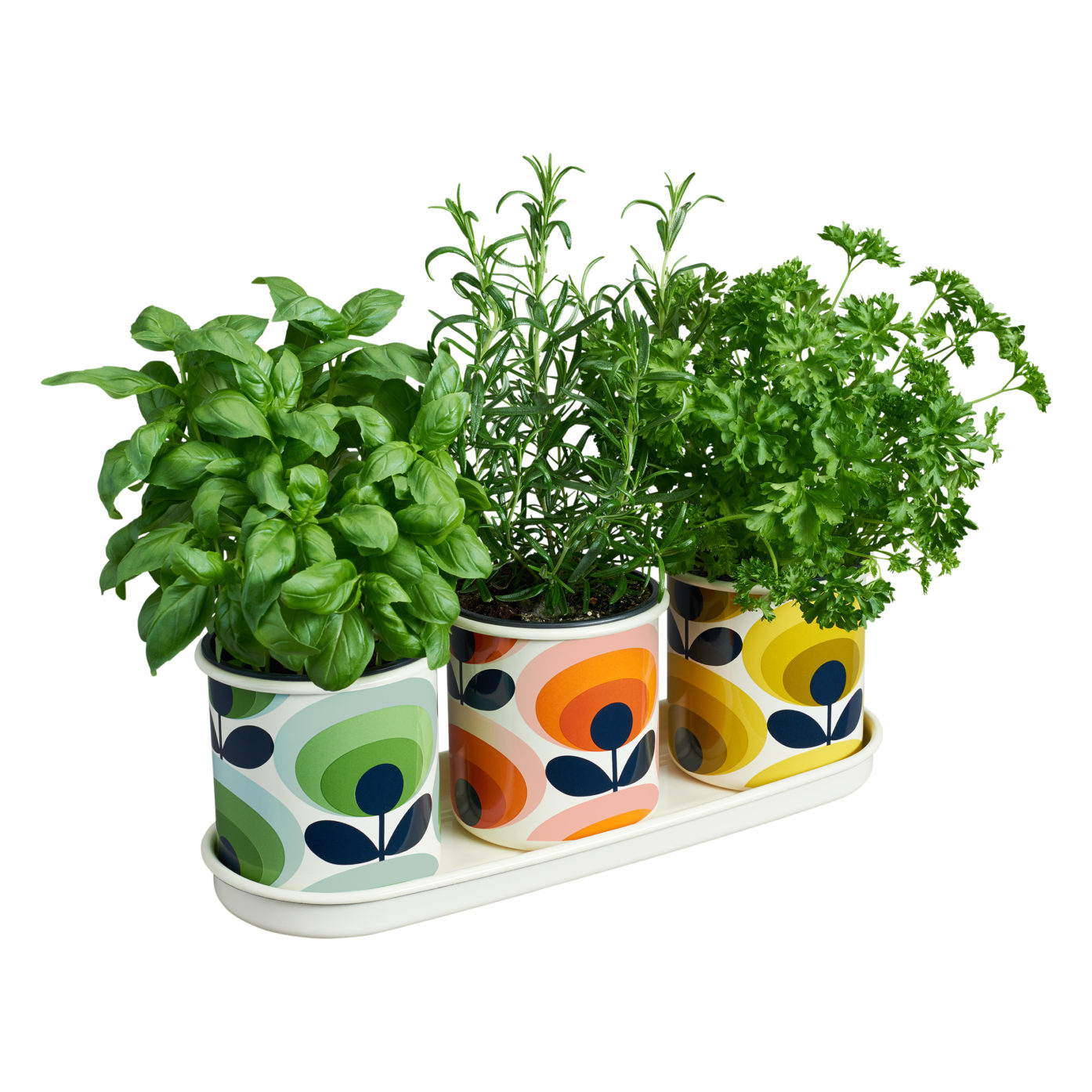OK Herb Pots Image 2