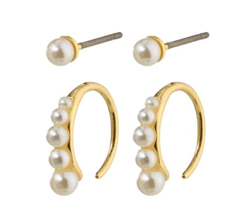 2 in 1 Earrings