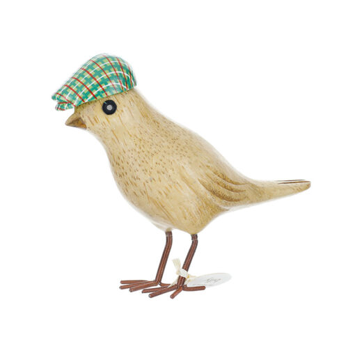 Garden Bird with Green Hat in Box by dcuk